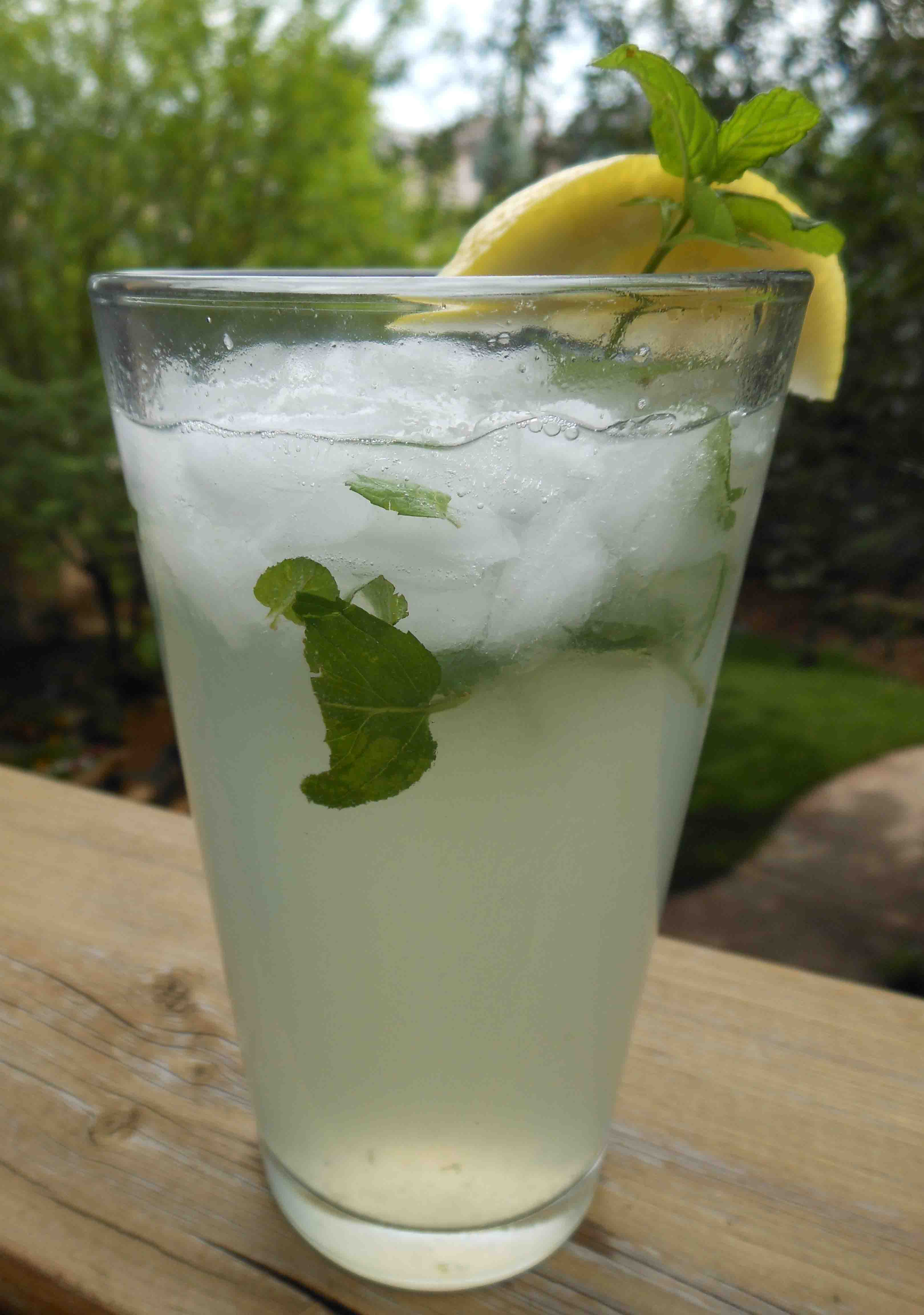 Zubrowka vodka recipes drink play love for Vodka and iced tea drinks