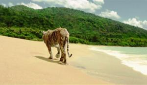 Richard Parker walks away from Pi without saying goodbye.