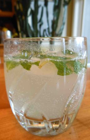 It's tart and refreshing, thanks to the lemon juice, mint and soda.