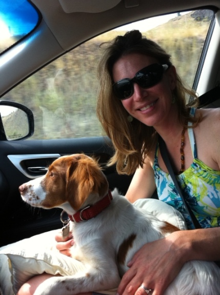 Blake took this lovely portrait, Travel With Dog, while he was driving down pass No. 4. Nice!