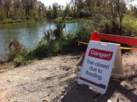 "The trails at the Inglewood Bird Sanctuary remain closed, but you can visit the park on a ""Flood Tour."""