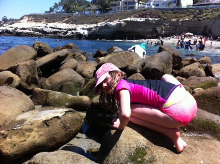 Avery plumbs the depths of every tide pool at La Jolla Cove.