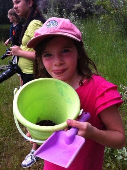 Avery shows off her bucket-o-berries along the Hidden Lake Trail in Kikomun Creek Provincial Park.