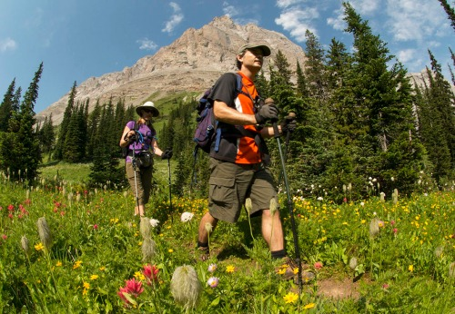 Skirting the imposing mass of Mount Bisaro by way of wildflower-studded alpine meadows. Photo by Mike McPhee.