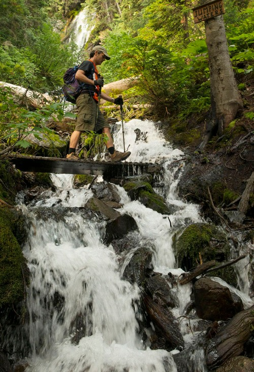 Blake walks across a wooden bridge spanning the 'Laughing Waters' waterfalls, barely one kilometre from the trailhead. Photo by Mike McPhee.
