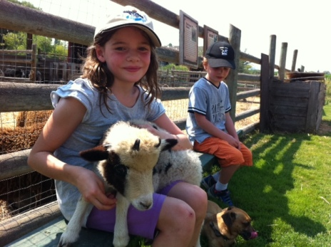 Avery cradles a baby Jacob sheep in her lap at O'Keefe Ranch.