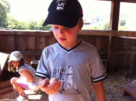 Bennett holds a fresh egg picked up from under a roosting chicken (really!) at O'Keefe Ranch.