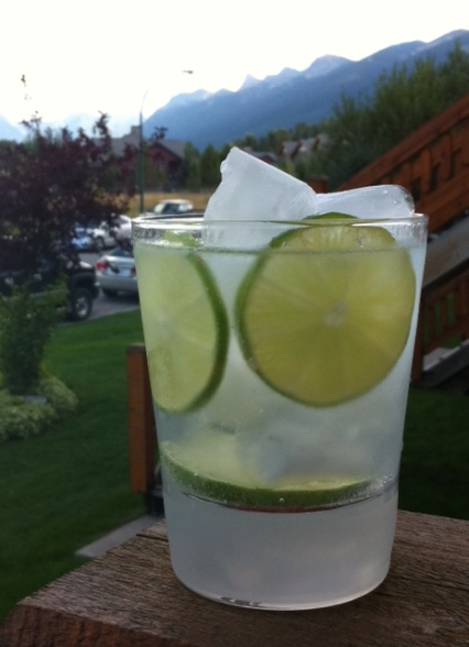 It's gin and tonic time! Try this refreshing highball after a hot day at the lake.