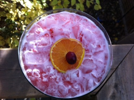 That's a fresh-cranberry-atop-an-orange-slice garnish. Very festive!