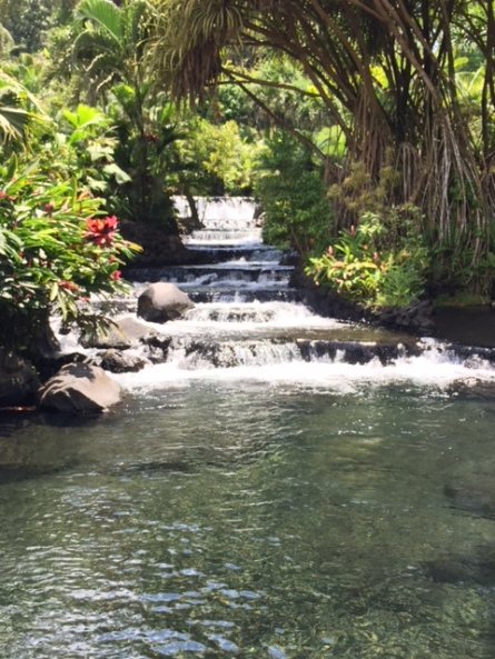 If there's water, you can pretty much get in anywhere at Tabacon, including this waterfall stream. Photo by Lisa Kadane.