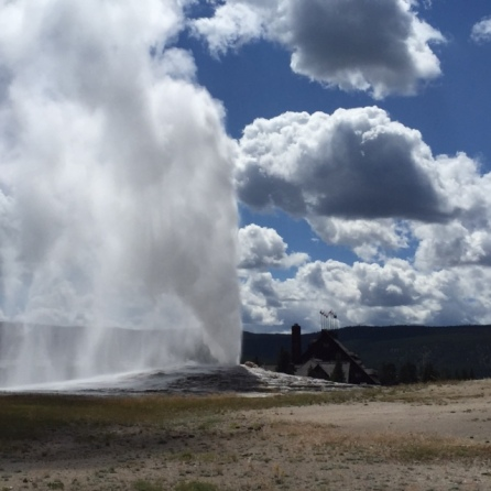 Old Faithful goes off four minutes late (but who's counting?) at Yellowstone.