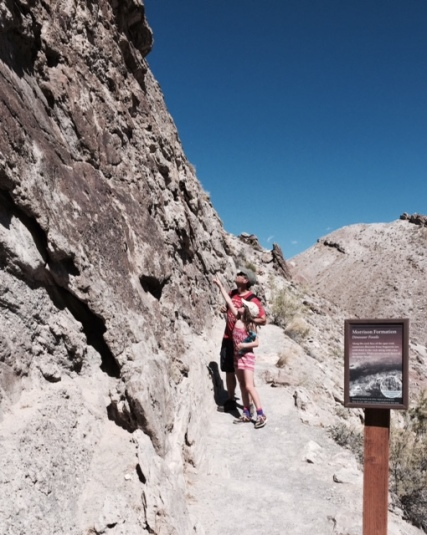Spotting fossils along the Fossil Discovery Trail at Dinosaur National Monument.