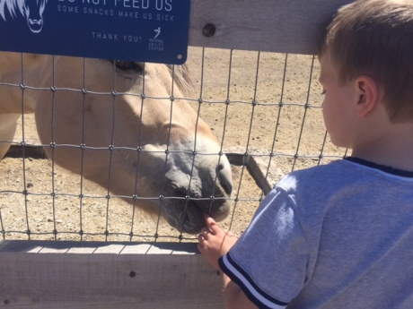 Bennett has a moment with a horse at the National Ability Centre in Park City, Utah.
