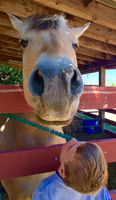 Bennett's love affair with horses continues during a Chromosome 18 field trip to the National Ability Centre in Park City, Utah.