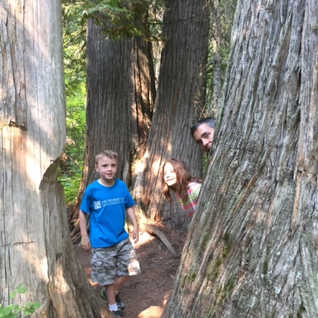 Peeking out from behind a very old Western Red Cedar.
