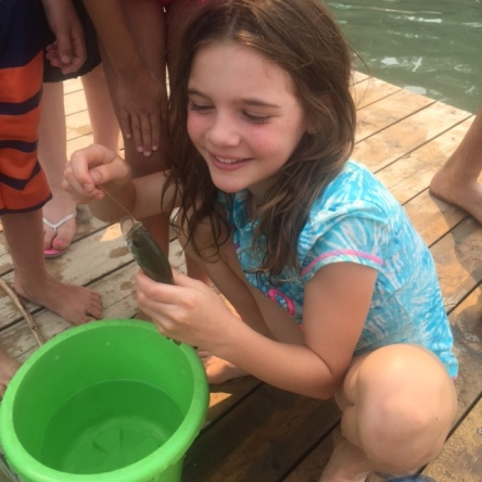 Avery catches another fish off the dock at Surveyor's Lake.