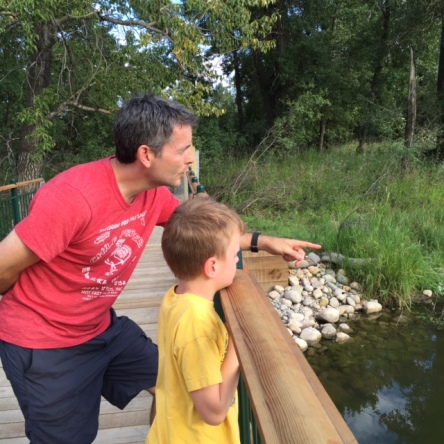 Blake and Bennett spot ducks from a new bridge at the recently reopened Inglewood Bird Sanctuary.