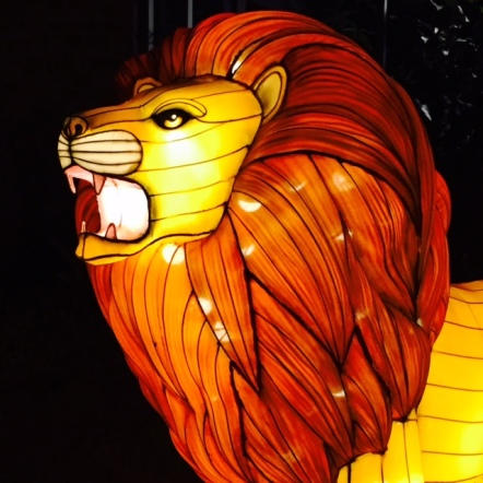 Some of the Illuminasia lanterns, like this lion, almost look like they're made of glass. Very cool.