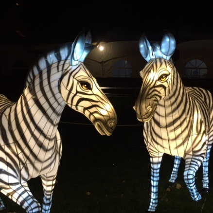 Illuminasia at the Calgary Zoo features 366 plant- and animal-shaped lanterns from China.