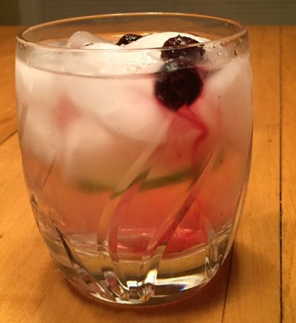 Blueberries make a sweet and pretty garnish in this fruit-forward G&T.