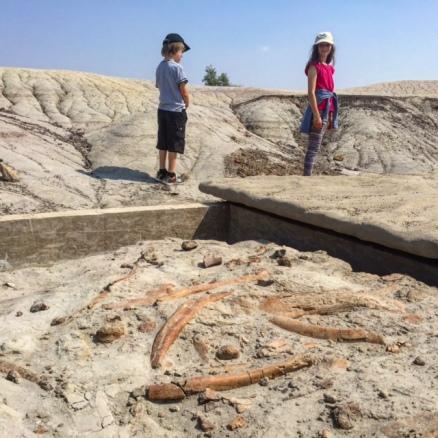 Centrosaur Quarry Hike at Dinosaur Provincial Park.