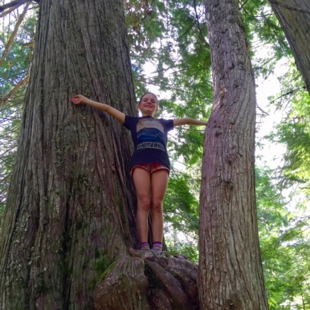 We humans sure look tiny next to these giant Western Red Cedars on Fernie's Old Growth Trail.