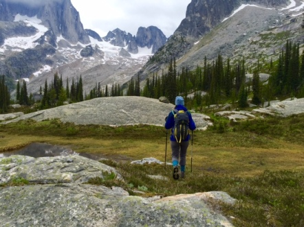 Hiking across a meadow toward the Bugaboos while heli-hiking with Canadian Mountain Holidays.
