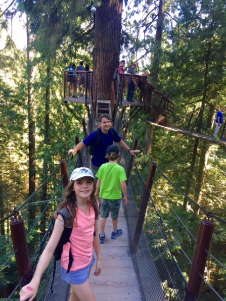 Walking between the tops of Douglas Fir trees at Capilano Suspension Bridge Park.