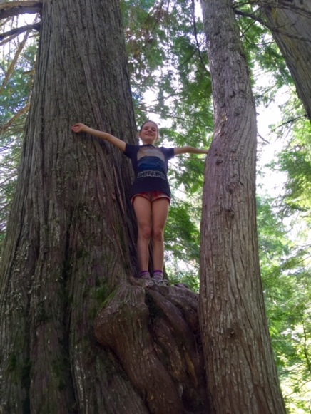 Avery stands on a Western red cedar along the Old Growth Trail in Fernie, B.C.